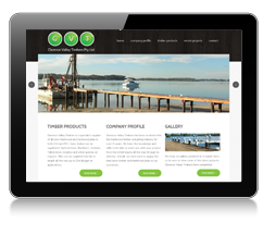 Ipad Website Development